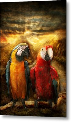 Animal - Parrot - Parrot-dise Metal Print by Mike Savad