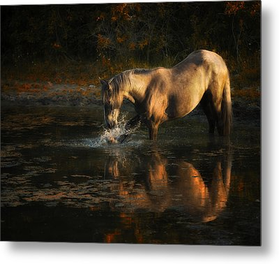 Another Morning At The Pond Metal Print by Ron  McGinnis
