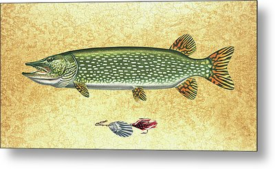 Antique Lure And Pike Metal Print by JQ Licensing