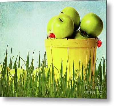 Apples Metal Print by Angela Doelling AD DESIGN Photo and PhotoArt