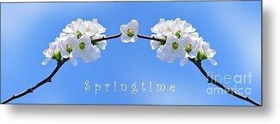 Archway To Springtime Metal Print by Kaye Menner