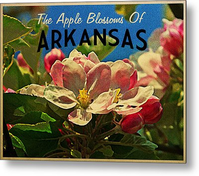 Arkansas Apple Blossoms Metal Print by Flo Karp