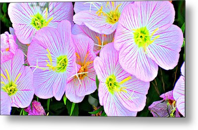 Arkansas Wildflowers Metal Print by Marty Koch