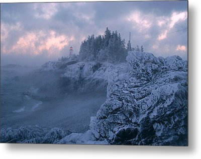 Arrival In The Cold Metal Print by Don Dunbar