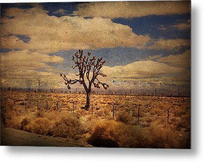 As We Go Down Life's Lonesome Highway Metal Print by Laurie Search