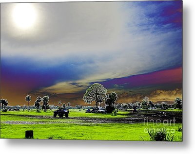 At The Mudjam Metal Print by Don Youngclaus