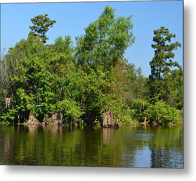 Atchafalaya Basin 46 Metal Print by Maggy Marsh