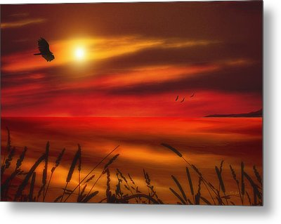 August Sunset Metal Print by Tom York Images