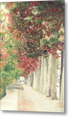 Autumn And Fall Metal Print by Ivy Ho