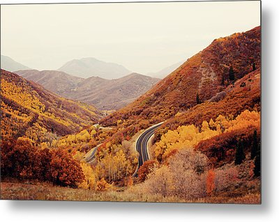 Autumn Colored Trees Along Mountain Road Metal Print by Www.julia-wade.com