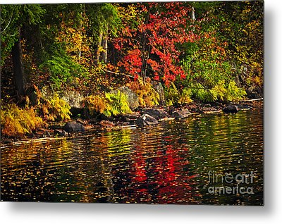 Autumn Forest And River Landscape Metal Print by Elena Elisseeva