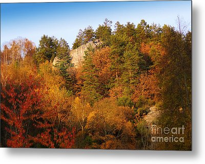 Autumn Forever Metal Print by Lutz Baar