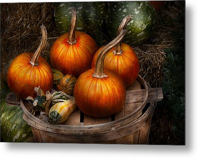 Autumn - Gourd - Pumpkins And Some Other Things  Metal Print by Mike Savad