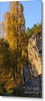 Autumn Grace Metal Print by Lutz Baar