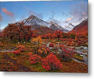 Autumn In Argentina Metal Print by Helminadia