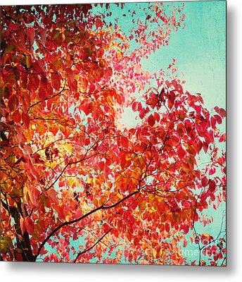 Autumn Metal Print by Kim Fearheiley