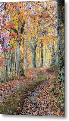 Autumn Lane Metal Print by Heavens View Photography