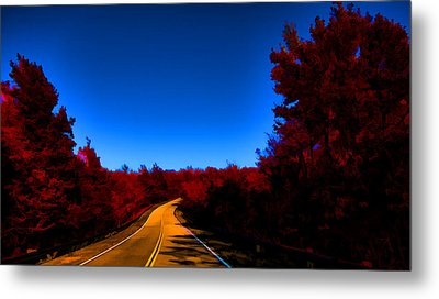 Autumn Red Metal Print by Douglas Barnard