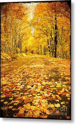 Autumn Road Metal Print by Darren Fisher