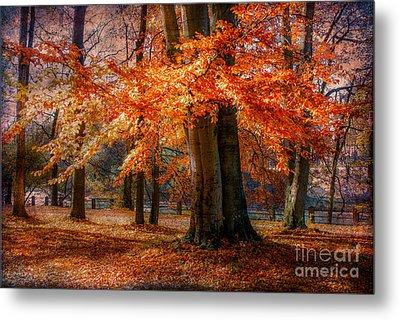 autumn skirt III Metal Print by Hannes Cmarits