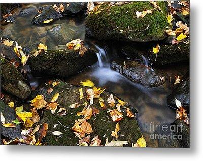 Autumn Stream Monongahela National Forest Metal Print by Thomas R Fletcher