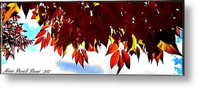 Autumn Sun Glory Metal Print by Danielle  Parent