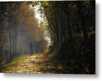 Autumn Way Metal Print by Jaroslaw Oleksyk