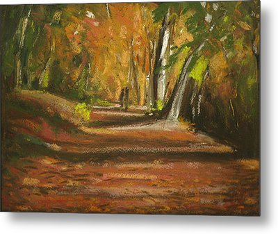 Autumn Woods 4 Metal Print by Paul Mitchell
