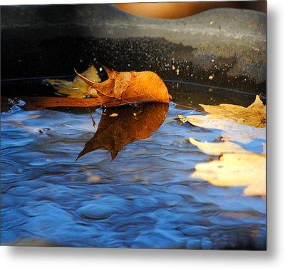 Autumn's Reflection Metal Print by Jai Johnson