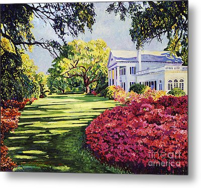 Azalea Spring Metal Print by David Lloyd Glover