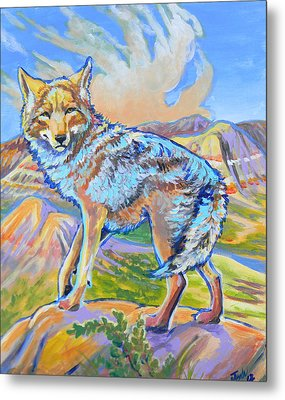 Badland Coyote Metal Print by Jenn Cunningham