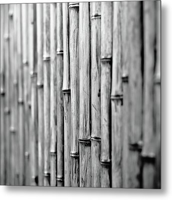 Bamboo Fence Metal Print by George Imrie Photography