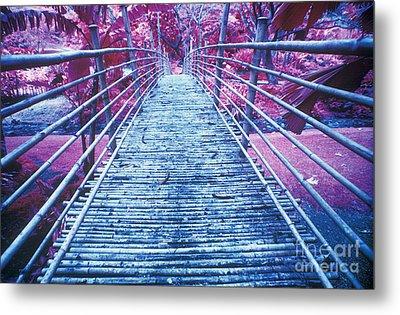 Bamboo Foot Bridge Metal Print by Will and Deni McIntyre
