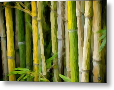 Bamboo Zen Metal Print by Paul Bartoszek