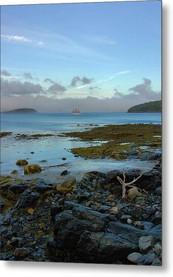 Bar Harbor Evening Metal Print by Stephen  Vecchiotti