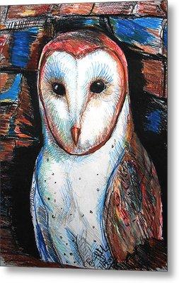 Barn Owl  Metal Print by Jon Baldwin  Art