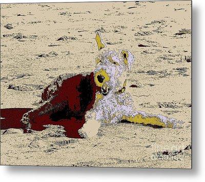 Beach Dog 7 Metal Print by Nina Kaye