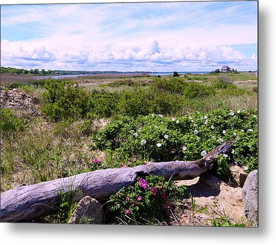 Beach Roadscape Metal Print by Janice Drew