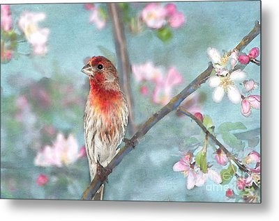 Beautiful Spring Metal Print by Betty LaRue
