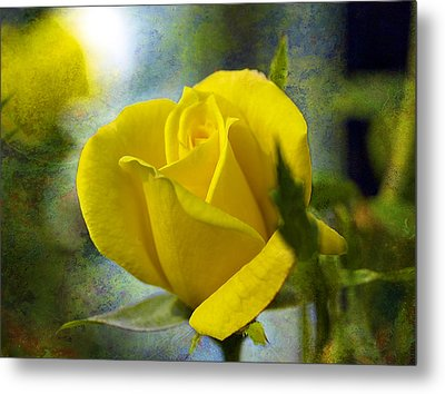 Beauty Of A Yellow Rose Metal Print by J Larry Walker
