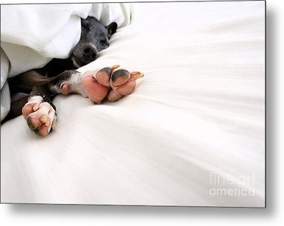 Bed Feels So Good Metal Print by Angela Rath