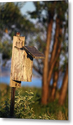 Birdhouse 23 Metal Print by Andrew Pacheco