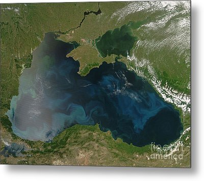 Black Sea Phytoplankton Metal Print by Nasa