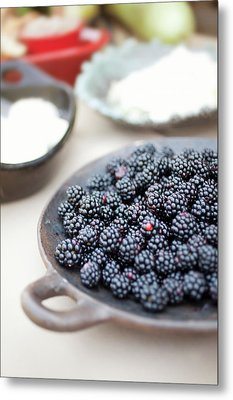 Blackberries Metal Print by AE Pictures Inc.