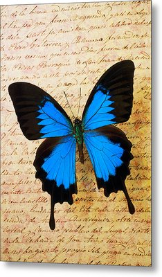 Blue Butterfly On Old Letter Metal Print by Garry Gay