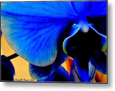 Blue Diamonds Orchids Metal Print by Danielle  Parent