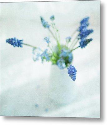 Blue Flowers In White Jug Metal Print by Jill Ferry