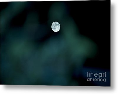 Blue Moon 2012 Metal Print by Molly Heng