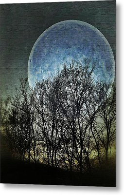 Blue Moon Metal Print by Marianna Mills