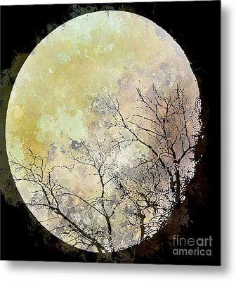 Blue Moon Rising Metal Print by Arne Hansen